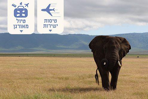 טיול לטנזניה בטיסות ישירות