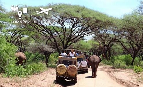 ג'יפ ספארי בשמורת טרנגירי בטנזניה