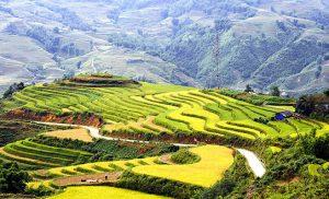 מיי טריפ - טיול בווייטנאם