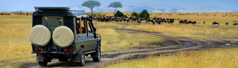 מסע-מקיף-חוצה-קניה—-12-ימים