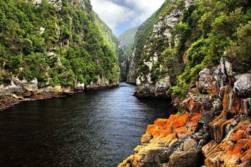טיול לדרום אפריקה ובוצואנה