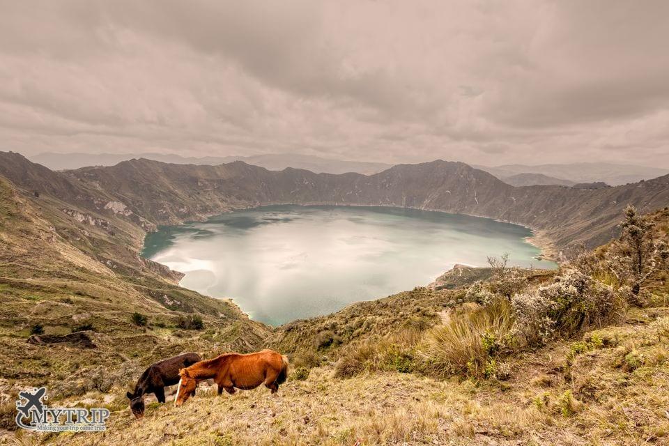 אקוודור Near Quilotoa Lagoon Ecuador South America