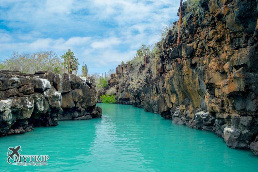 האי סנטה קרוז בגלפגוס