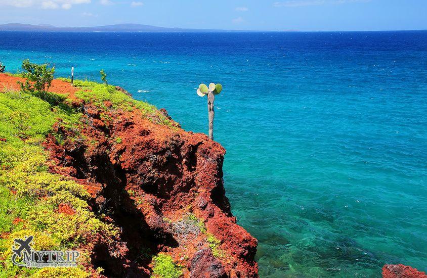 האי ריבידה בגלפגוס