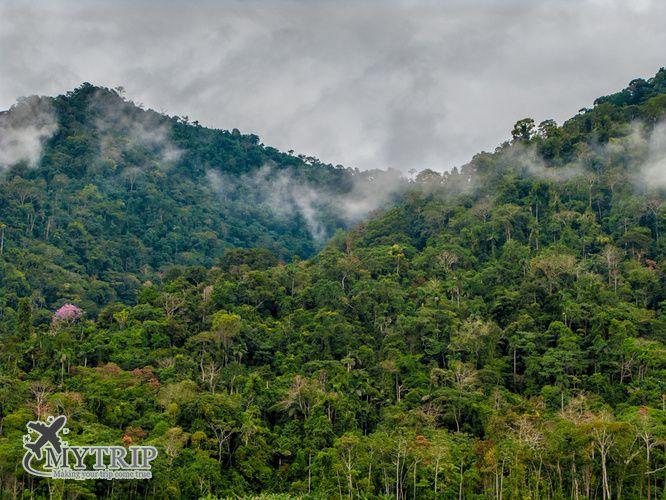 הפארק הלאומי מאנו פרו