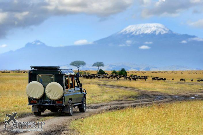 טיפים בקניה