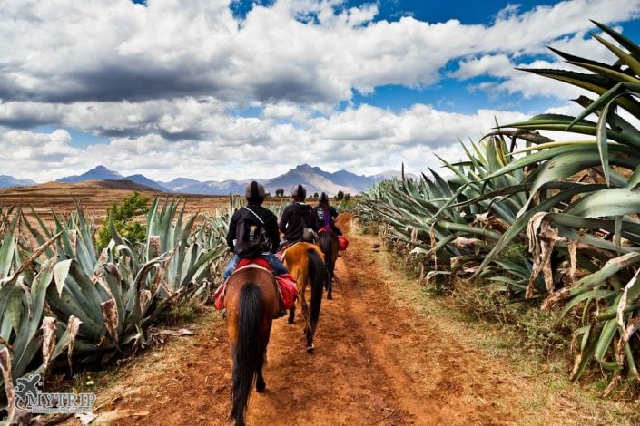 מטיילים בדרום אפריקה