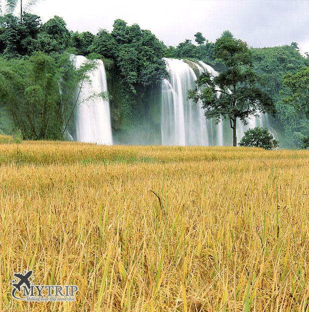 מפלי באן גיוק וייטנאם