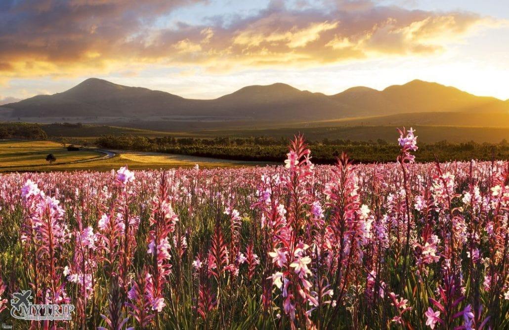 נופים מיוחדים במסגרת טיול לדרום אפריקה