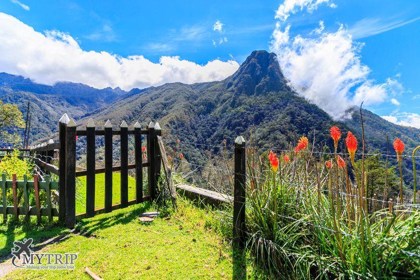 עמק קוקורה בקולומביה