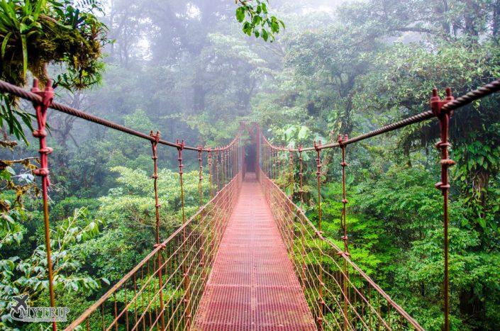 קוסטה ריקה - גשרים