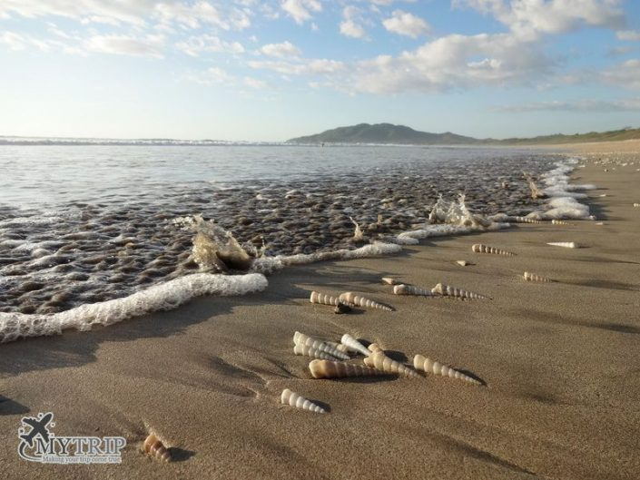 Playa Grande בקוסטה ריקה