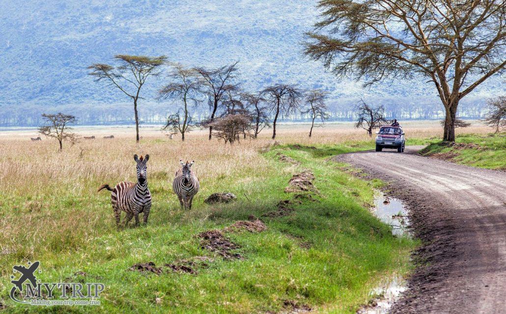 שמורת נקורו קניה