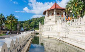 מקדש בודהיסטי על רקע עצים ושמיים כחולים