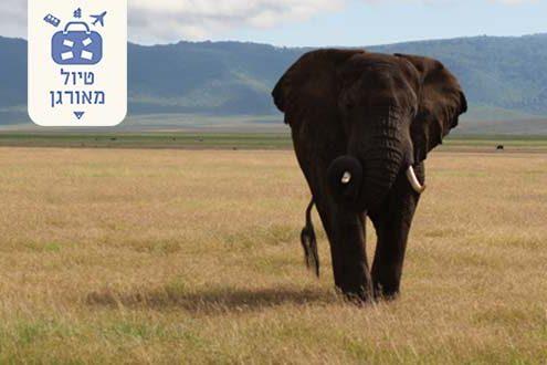 טיולים מאורגנים לטנזניה עם מיי טריפ