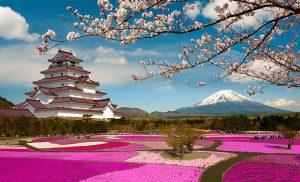 מיי טריפ - טיול ליפן
