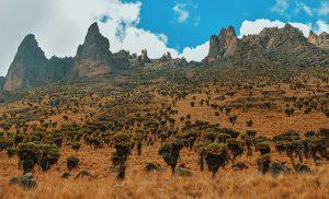מיי טריפ - טיול לקניה