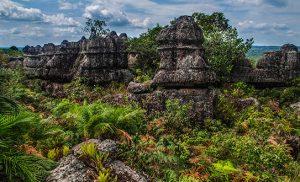 מיי טריפ - הטיולים המאורגנים הטובים בעולם