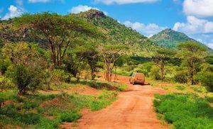 מיי טריפ - טיולי ספארי בטנזניה