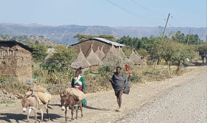 מיי טריפ - טיולים ומסעות באפריקה