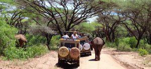 מיי טריפ - טיול לטנזניה עם ילדים