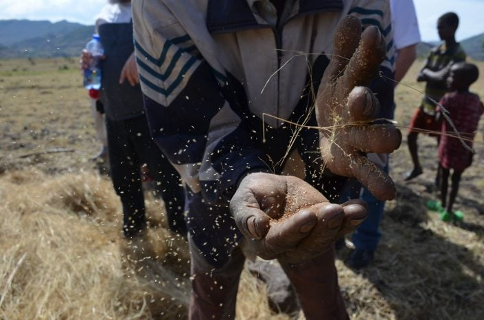 טיול לשומרי מסורת באתיופיה