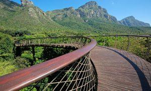 טיולים פרטיים לדרום אפריקה
