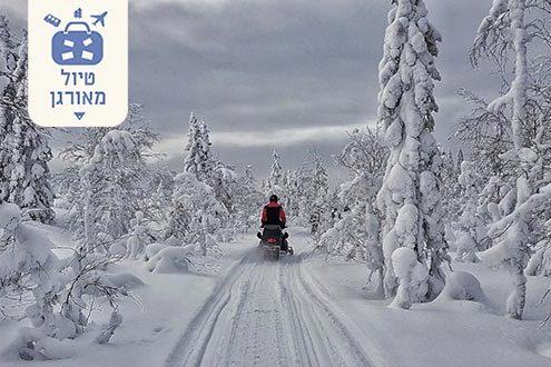 טיול ספארי חורף לשוודיה