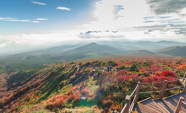 JEJU Yeongsil Trail Hallasan National Park