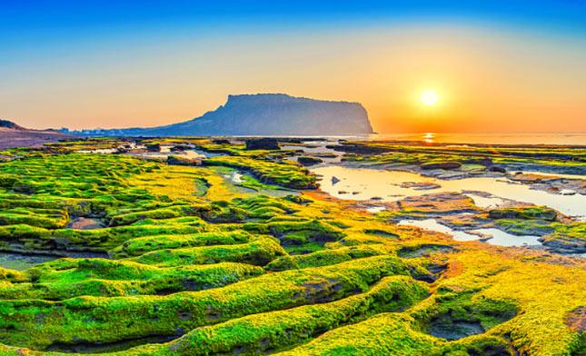 SEONGSAN JEJU ISLAND