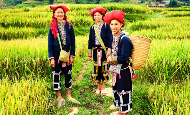 THREE-WOMEN-OF-RED-DAO-HILL-TRIBE-VIETNAM