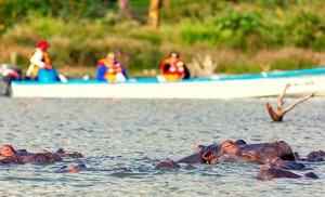 שייט באגם נאיוושה בקניה
